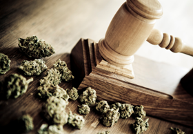 Washington Cannabis Attorneys Litigation